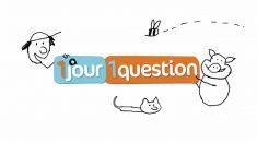 Fiche pédagogique pour l'émission 1 jour, 1 question « A quoi ça sert l'école  ? »