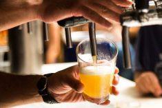 Bars, zincs, cafés, bistrots : leur nombre est en hausse dans le département du Jura