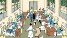 Soirée mouvementée au Music Hall Palace – Ép. 1/5 – Les Aventures de Tintin : les 7  ...