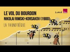 Rimski-Korsakov : Le Vol du Bourdon – La Faunothèque – YouTube